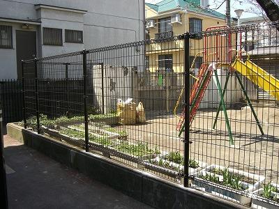 20090330-3.jpg